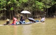 2 - 10    Wealthy Family Travel, Ampiyacu River, Amazon Jungle, Peru