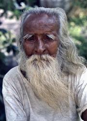 2 - 30    Sri Lankan Elder