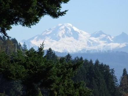 Mount Baker From Cooper's Farm