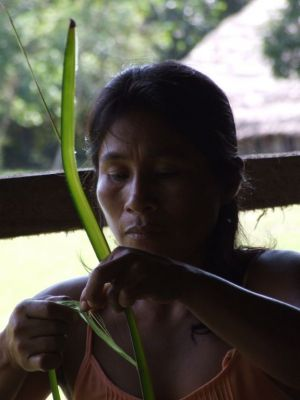 31 - Removing Cambira Palm Fibers For Weaving
