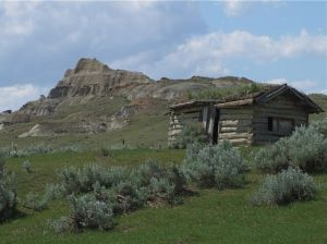 5 - Happy Jack's Homestead, Alberta