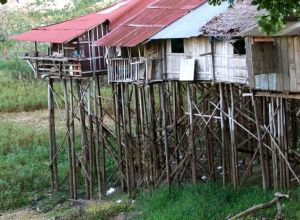51 - Living On The Iquitos Floodplain
