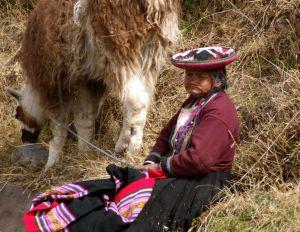 24 - Quechua Grandmother Tending Her Llama