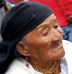 19 - Bartering At Otavalo Livestock Market