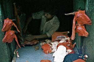 57 - Kathmandu Meat Market